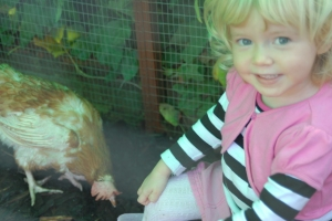 Trinity, bonding with the chickens